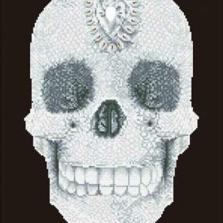 Diamond Dotz DD10.021 Crystal Skull