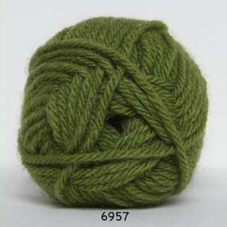 Thule 6957 grön